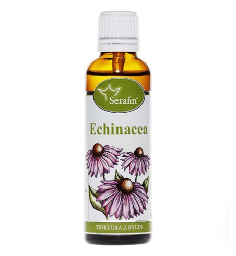 Echinacea - tinktura z bylin